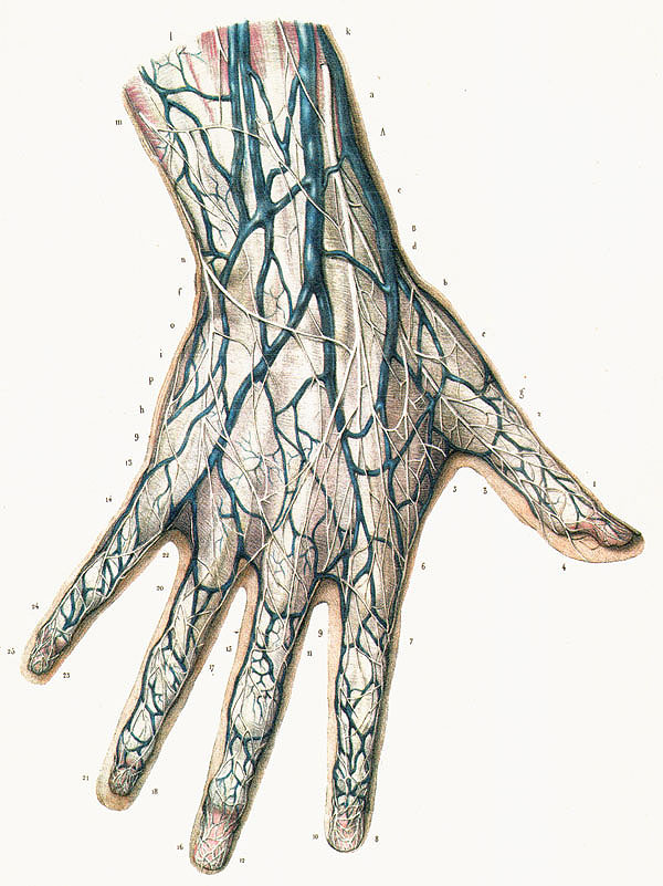 Nervenverletzung Finger taubes Gefühl nach Schnittwunde ...