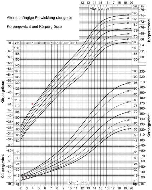 Altersabhängige körpergewichts und körpergrössenentwicklung