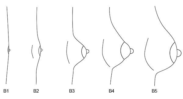 Der Moden auf skajrim die Erhöhung der Brust